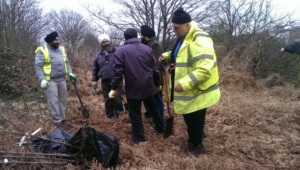 Volunteers eagerly work on planting trees